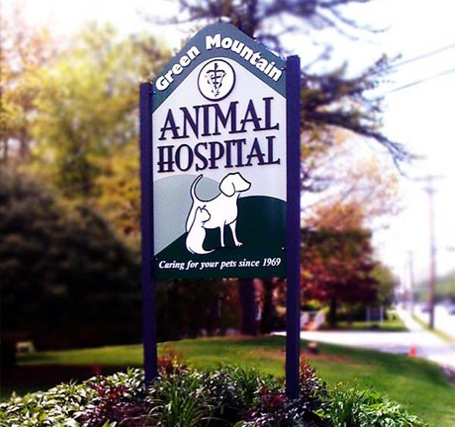 COURTESY OF GREEN MOUNTAIN ANIMAL HOSPITAL