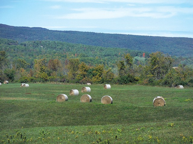Hale bales at the foot of Bald Mountain - ETHAN DE SEIFE