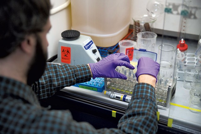 Philip Cannata processing samples at Burlington Labs. - JAMES BUCK