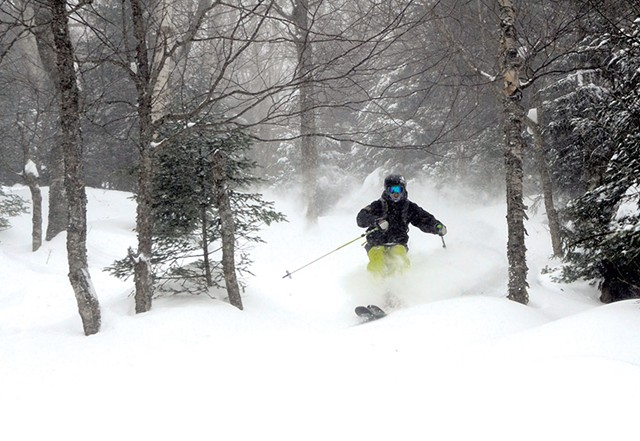 The backcountry at Mad River Glen - COURTESY OF SKI VERMONT/JEB WALLACE-BRODEUR