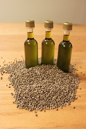 Victory Hemp ran a trial run of cold-pressed hemp oil at the Middlebury plant - COURTESY OF VICTORY HEMP
