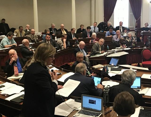 Rep. Heidi Scheuermann (R-Stowe) arguing against the minimum wage bill - TAYLOR DOBBS