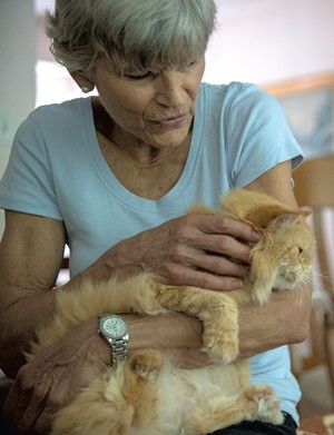 Annie Viets holding one of her rescue cats - JAMES BUCK