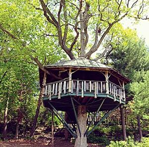 The treehouse at Oakledge Park - CAROLYN FOX