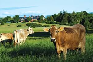 Shelburne Farms - COURTESY OF MARSHALL WEBB