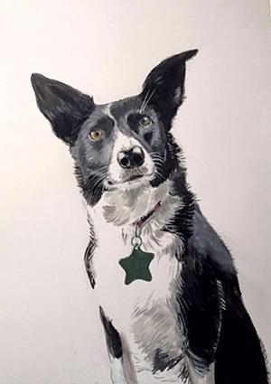 10-pets-portrait.jpg