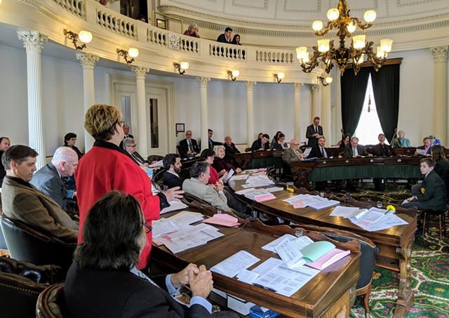 Sen. Ann Cummings questioning Sen. Chris Bray about a proposal to ban single-use plastic bags. - TAYLOR DOBBS