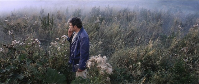 A gorgeous earthly landscape in Solaris - MOSFILM