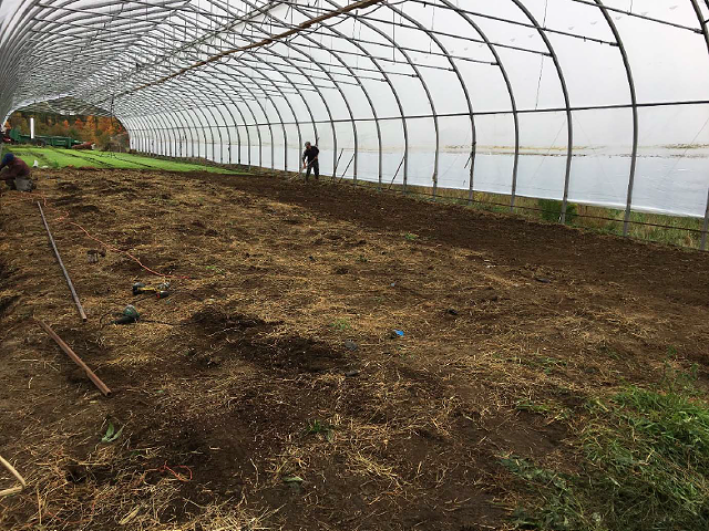 The Pete's Greens greenhouse where the cannabis grew - AGENCY OF AGRICULTURE, FOOD AND MARKETS