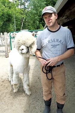 Ian Lutz moving a male alpaca to the barn for breeding - HANNAH PALMER EGAN