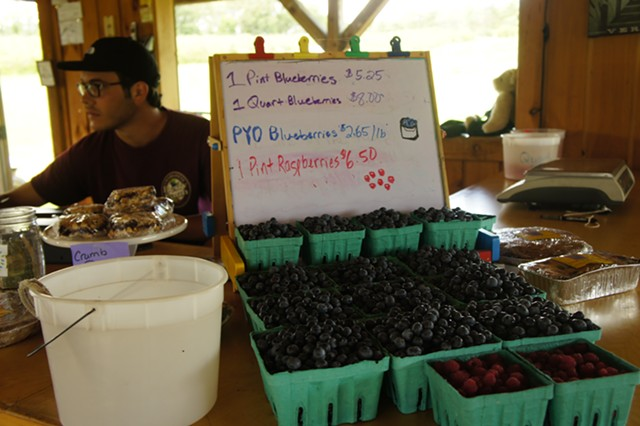 Berries for sale at Charlotte Berry Farm - STACEY BRANDT