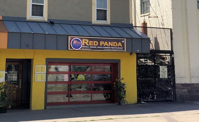 Red Panda on lower Church Street - JORDAN BARRY
