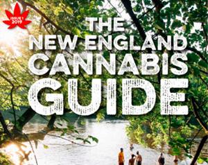 Heady Vermont's new guide - SCREENSHOT