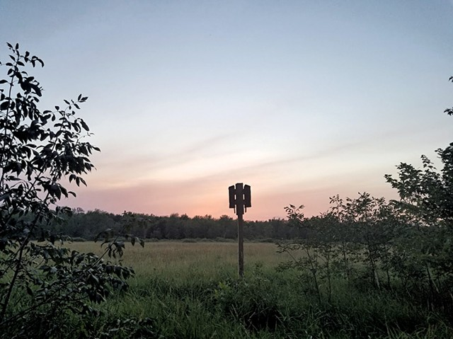 Bat house at Cornwall Swamp Wildlife Management Area - COURTESY OF DYLAN O'LEARY