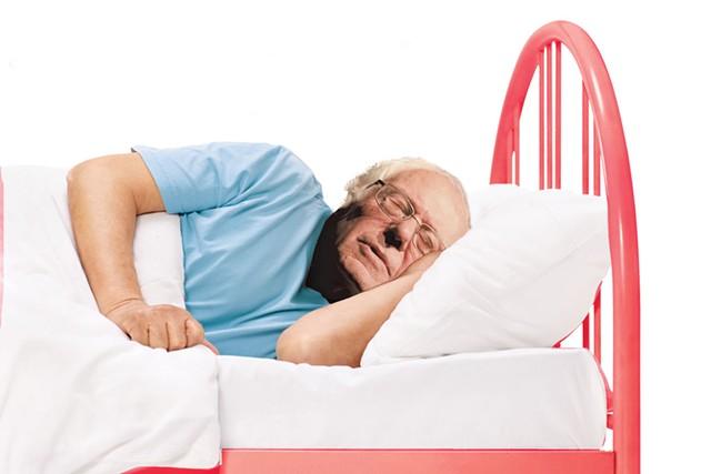 Sleeping Sanders - KIRSTEN CHENEY