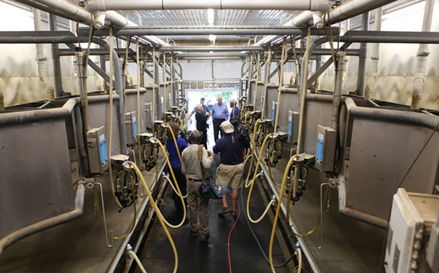 Leahy visits the milking parlor. - KEVIN MCCALLUM
