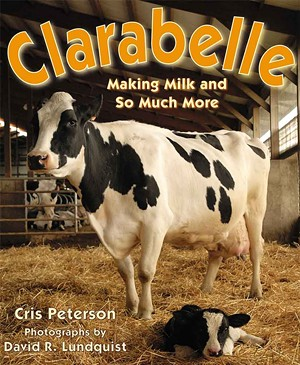 clarabelle-book.jpg