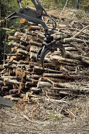A claw loader feeding a chipper in Underhill - BEAR CIERI