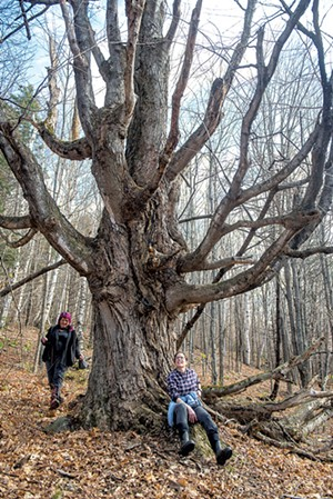Meg Mass (left) and Anya Schwartz visiting the Grandmother Tree, a sacred space on the property - KAREN PIKE