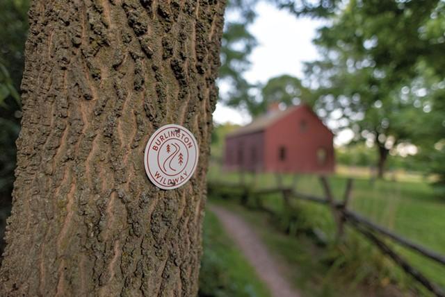 Exploring the Burlington Wildways - COURTESY OF ZOE RICHARDS