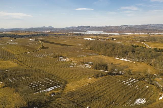 Champlain Orchards - CALEB KENNA