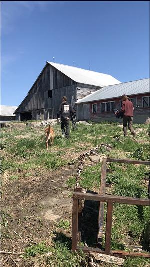 Victory Farm site in Marshfield - COURTESY OF JEAN HAMILTON