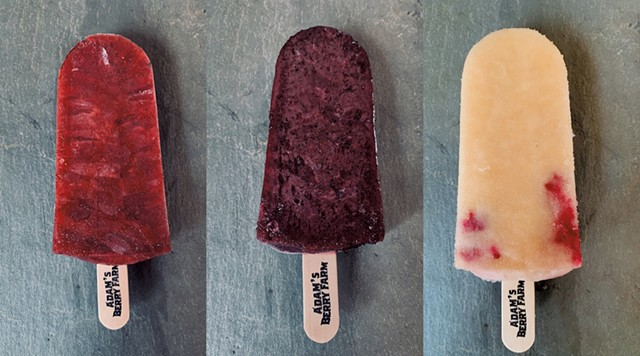 Adam's Berry Farm popsicles: blueberry-strawberry-peach, blueberry-lime and cantaloupe-raspberry-mint - COURTESY OF ADAM'S BERRY FARM
