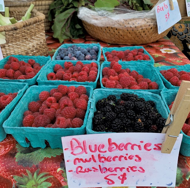 Last Resort Farm's booth at the Richmond Farmers Market - MELISSA PASANEN ©️ SEVEN DAYS