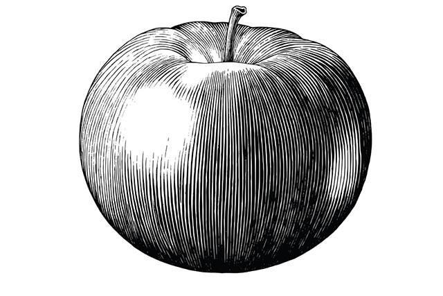 Macintosh apple - CHANNARONG PHERNGJANDA | DREAMSTIME.COM