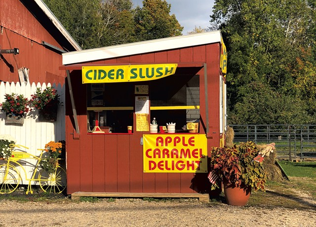 A perfect day for a cider slush at Allenholm Farm in 2019 - JORDAN BARRY ©️ SEVEN DAYS