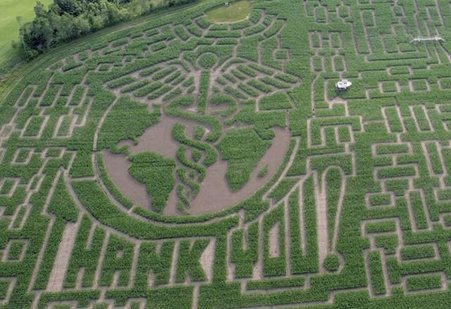 Great Vermont Corn Maze - COURTESY OF MIKE BOUDREAU