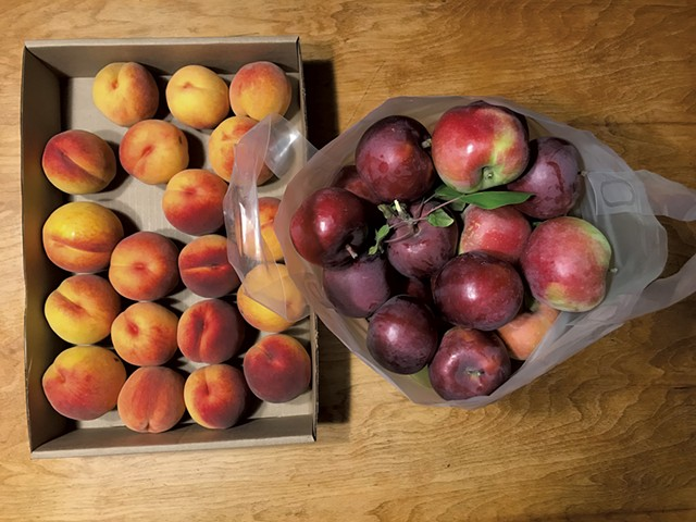 Peaches and apples from Shelburne Orchards - SALLY POLLAK ©️ SEVEN DAYS
