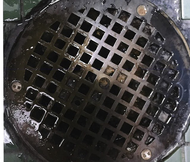 A February 2020 photograph of a Chittenden Regional Correctional Facility shower drain taken by Office of Prisoners' Rights investigator Hillary Reale - CHITTENDEN SUPERIOR COURT