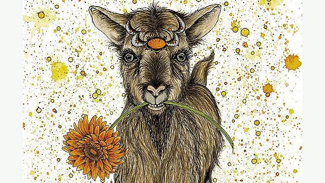 Goat by Nikki Laxar - COURTESY OF NIKKI LAXAR