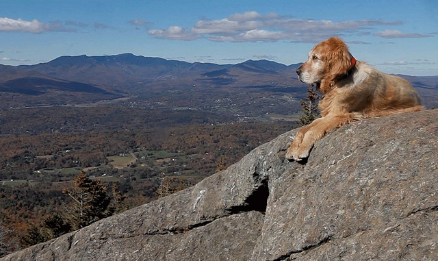 "Baylor in a still from ""The Mountain Dogs"" by Aynsley Floyd - COURTESY OF AYNSLEY FLOYD"
