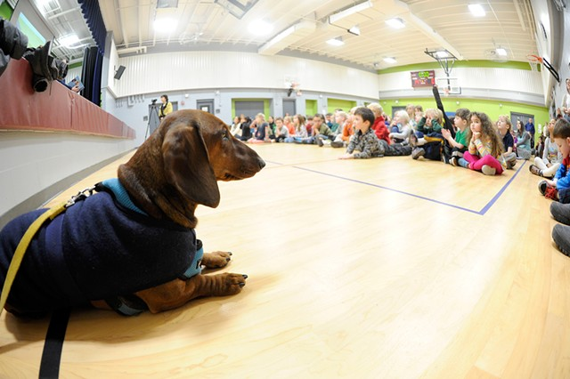 Hobbes at East Montpelier Elementary School - JEB WALLACE-BRODEUR