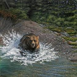 """""""Alaska Cold Rush"""""""