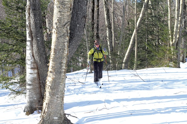 A cross-country skier - COURTESY OF UMIAK OUTDOOR OUTFITTERS
