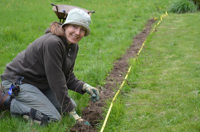 Silvia Jope planting a bare root hornbeam hedge - COURTESY OF SILVIA JOPE