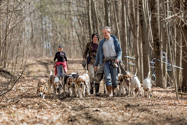 Sen. Chris Bray walking foxhounds with his partner, Kate Selby - OLIVER PARINI