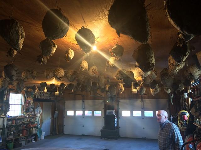 Baxter Doty surveys his nest collection. - RACHEL JONES