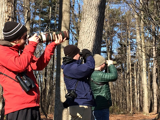 Taj Schottland, Zac Cota and Remy Lary birding in Winooski - COURTESY OF MEGHAN OLIVER