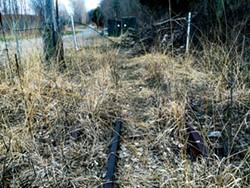 Abandoned rail ties - SADIE WILLIAMS
