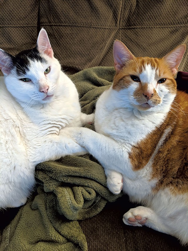 Percy and Max (Human: Renee Langevin) - COURTESY