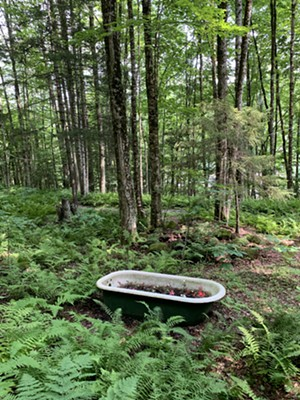 Fanciful decor along the trail at Jeudevine Falls - MELISSA PASANEN ©️ SEVEN DAYS