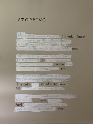 """""""Stopping"""" by Mary Ruefle - SALLY POLLAK"""