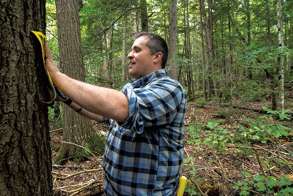 Morgan Gold posting the property line at his Gold Shaw Farm in Peacham - JEB WALLACE-BRODEUR