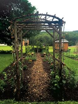 Garden at Deborah Rawson Memorial Library - NANCY STEARNS BERCAW