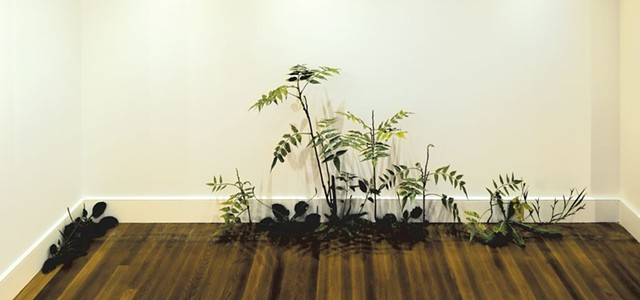 """Weed"" by Tony Matelli - COURTESY OF HALL ART FOUNDATION"