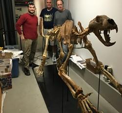 Kyle Sikora, Alan Stout, Scott Terry and the North American lion skeleton - SADIE WILLIAMS